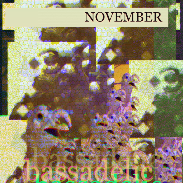 Its november at Bassadelic.com. Get weird, make some interesting music