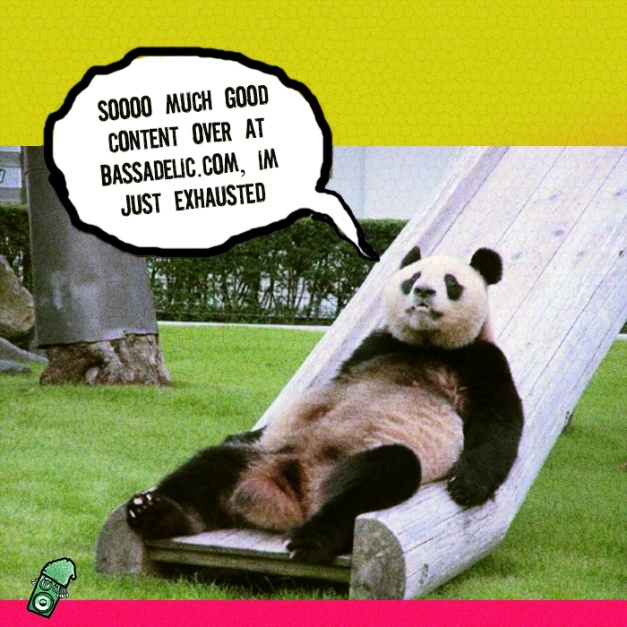 exhausted  panda on slide talkin bout bassadelic dot com